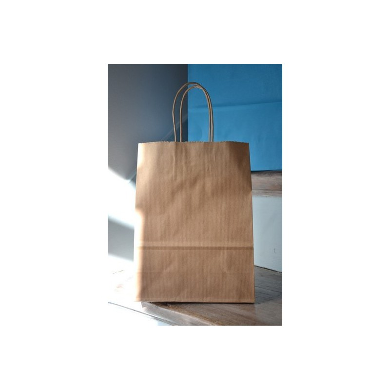 Mini Size White Or Natural Kraft Paper Bags With A Twisted